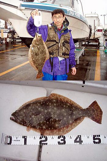 ヒラメ(1.75kg/55cm)